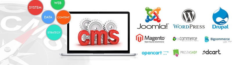 cms-development