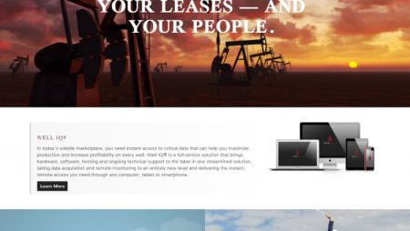 Web Development for Petro company